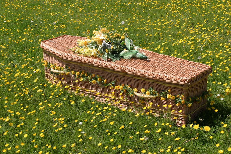 cost of cremation and traditional burial pdf