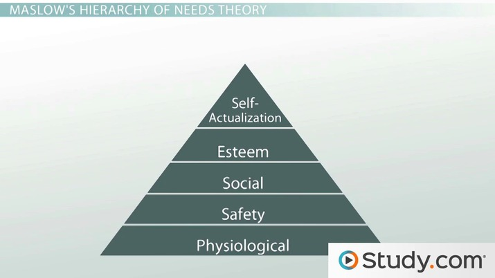 application of behavioral management theory in hospital management