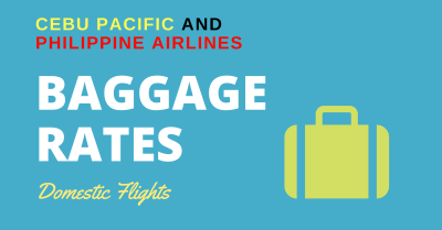 cebu pacific guidelines for check-in luggage