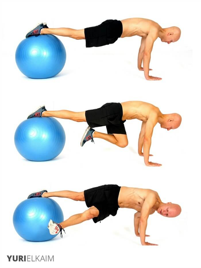 core stability exercises for lower back pain pdf